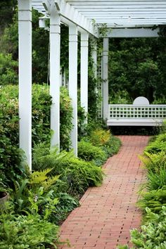 Opt for a paver pathway with a simple design to draw attention to the vegetation