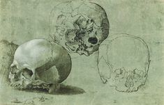 "Barthel Beham studied the human skull from three different views: side, underside, and front. ""Study of Three Skulls,"" about 1530, Southern German. Pen and black ink, brush with gray wash, heightened with white gouache, on green prepared paper. J. Paul Getty Museum, Los Angeles, California"