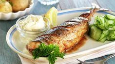 På Sørlandet er makrellen en yndet gjest på sommerhalvåret. Den er trofast og ikke minst lettlurt. Det å fiske makrell er utrolig morsomt, kanskje spesielt for dem som ikke får så veldig mye fisk på kroken resten av året. Den ekte sørlending serverer makrellen helstekt med agurksalat, rømme og kokte nypoteter. Norwegian Food, Pork, Turkey, Sweets, Fish, Chicken, Recipes, Summer, Pork Roulade