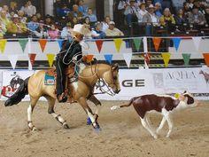 Calf Roping - model horse and calf - by Andrea Robbins