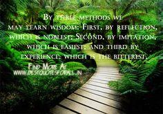 #bestquotes #quotes #good