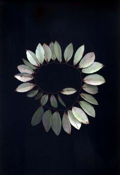 Lyndie Dourthe: Botanica