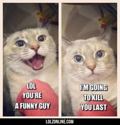 Lol You Are A Funny Guy#funny #lol #lolzonline