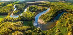 Rzeka, Lasy