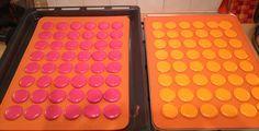 Macarons au Thermomix Plus