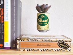 DIY Home Decorations Blog  Hover plant made with tin beer can and cigar box  http://ift.tt/2nwhQLD