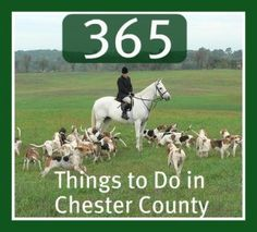 Things to do in Chester County, PA Brandywine Valley, Chester County, New City, Where The Heart Is, Pennsylvania, Childhood Memories, The Neighbourhood, Things To Do, Beautiful Pictures