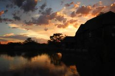 Bushveld Pond Guest House and Wedding Venue Wedding Venues, Wedding Ideas, Pretoria, Pond, Celestial, Sunset, House, Outdoor, Wedding Reception Venues