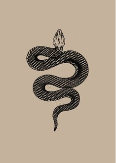 Snake tattoos are one tattoo design that you'll find hard to ignore. To give you a deadly dose of inspiration and ideas, I'm going to share with you the top best black mamba snake tattoos. Snake Drawing, Snake Art, The Snake, Future Tattoos, New Tattoos, Kobra Tattoo, Serpent Tattoo, Black Mamba Snake, Tattoo Drawings