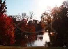 Fine Art Photography Landscape Photography by BethFisherFineArt