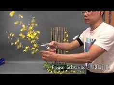 CH14 教堂花藝 Weekly Church Flower #14 Gordon Lee