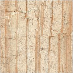 Millennium Tiles 600x600mm Brilliante HD Digital Glossy - Cosmo Brown - Series