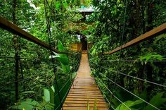 Costa Rica has sloths, waterfalls, volcanos, and absolutely incredible resorts. BRB, going to an airport!