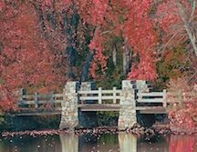 Fern Island Park in autumn.  Wausasu, Wisconsin.