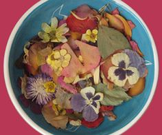 Mom's dried flowers on We Heart It Frankie Cosmos, Princess Of Power, Moomin, Dried Flowers, We Heart It, Christmas Gifts, Merry Christmas, Give It To Me, Cool Stuff
