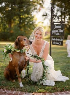 Bride Poses With Her Ring Bearer Dog Exclusively Weddings