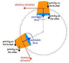 Centripetal Force Experiments