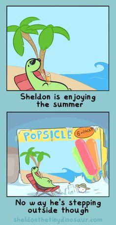 Sheldon is enjoying the summer. No way he's steeping outside though