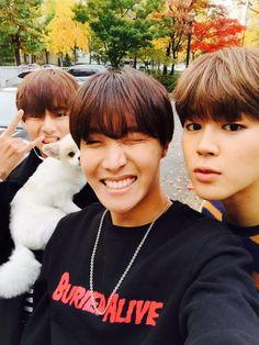 V, J-Hope, Jimin ~ BTS Twitter[151111] | btsdiary