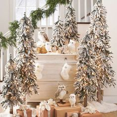 $125 Set of Three Pre-lit Alpine Trees 2, 3 and 4 foot