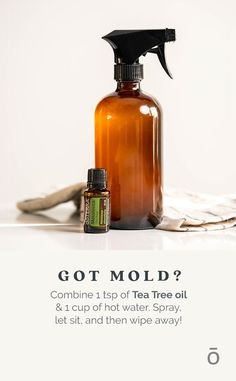 Homemade Essential Oils, What Are Essential Oils, Essential Oils Cleaning, Tea Tree Essential Oil, Essential Oil Blends, Doterra Tea Tree, Cleaning Recipes, Cleaning Hacks, Cleaning Supplies