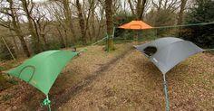 Stingray, camping between trees