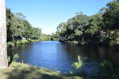 Turtle Cove Villas lake