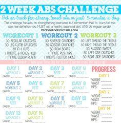 2 week ab challenge!