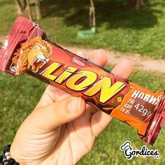 Chocolate Lion | Gordices S.A.