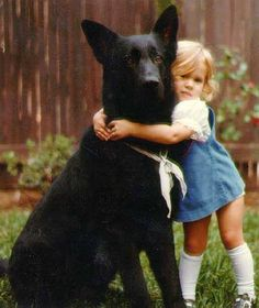 Lets her hold on as tight as she wants! #dogs #pets #GermanShepherds #children…