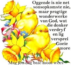 Good Morning Good Night, Good Morning Wishes, Day Wishes, Good Morning Quotes, Lekker Dag, Evening Greetings, Afrikaanse Quotes, Goeie Nag, Goeie More