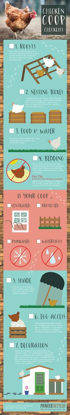 Chicken Coop Checklist | Build your own chicken coop right on your homestead with these chicken coop plans!