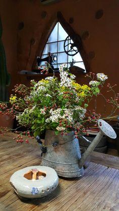 울집 담장에 있는 빨간 찔레꽃 열매 줄기와봄에 취나물 실컷 뜯어 먹고 난 자리에 핀 취꽃,그리고 들국화가을은 참 예쁘다