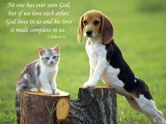 God Lives In Us Photo:  This Photo was uploaded by lady_enya_1. Find other God Lives In Us pictures and photos or upload your own with Photobucket free i...
