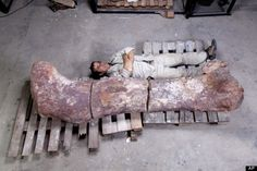 "Move over, T. rex. And take a seat, Argentinosaurus. Scientists have unearthed a newfound prehistoric giant that just may be the ""world's largest dinosaur"" yet discovered. Wow.  Researchers from the Museo Paleontologico Egidio Feruglio in Argentina unveiled the discovery of seven dinosaurs' remains this week in a series of photos that show off the substantial size of each of the ancient creatures' fossilized bones."