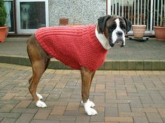 Knit-Cables and Hearts Dog Coat Dog: Petite, Small, Medium, Large, Extra-Large