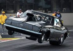 What Can You Say About This? And No, It's Not Photo-Shopped! #wheeliewednesday #wheelsupwednesday