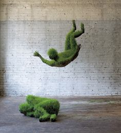 Lives of Grass by Mathilde Roussel Soil, wheat seeds, recycled metal and fabric Brooklyn, New York, 2010