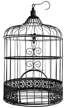 D coration de cage oiseaux sur pinterest cages - Decorer une cage a oiseaux ...