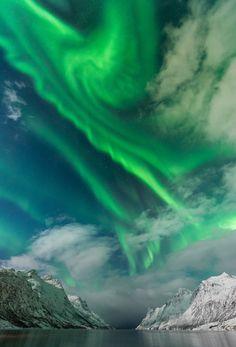 renamonkalou:  Auroras on a cloud | Lars-Espen Langhaug