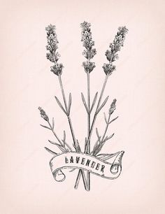Vintage Collage illustration Lavender Flowers by ShabbyPrintable