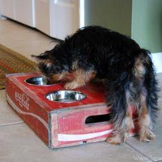 Vintage {Coca-Cola Crate} turned {Dog Bowl!}