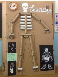 7th Grade Science, Human Body Parts, School Health, Anatomy Art, Science Projects, Art For Kids, Kindergarten, Education, Sensory Book