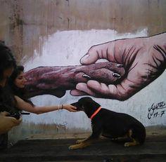 Ένα γκράφιτι για τα αδέσποτα του Περάματος! (Εικόνες)