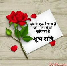 Good Night Miss You, New Good Night Images, Beautiful Good Night Images, Good Morning Beautiful Quotes, Romantic Good Night, Cute Good Night, Good Night Friends, Good Night Gif, Good Night Wishes