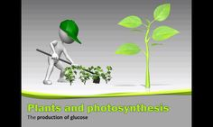 Animated PowerPoint that may be used to introduce plants and photosynthesis for Grade 8 Life Science, Science And Nature, Science Resources, Photosynthesis, Natural, Plants, Science And Nature Books, Planters, Nature