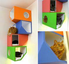 Catissa Floating Modular Cat House