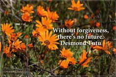 Photo by Coreen Kuhn Quote by Desmond Tutu Location: Namaqua National Park #coreenkuhnphotography #landscapephotography #flowerphotography