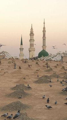Architecture Discover Masjid Haram Al Masjid An Nabawi Mecca Wallpaper Islamic Wallpaper Allah Wallpaper Islamic Images Islamic Pictures Medina Mosque Mecca Masjid Masjid Haram, Al Masjid An Nabawi, Mecca Madinah, Mecca Masjid, Mecca Wallpaper, Islamic Wallpaper, Allah Wallpaper, Islamic Images, Islamic Pictures