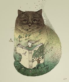 Cat and a story book...
